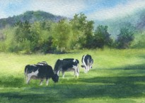 Black and White on Green (Watercolor)