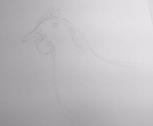 Chicken Pic 1