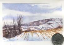 Cut Corn (Watercolor)