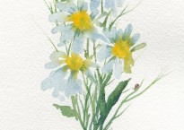 Daisies and a Lady, Original Watercolor