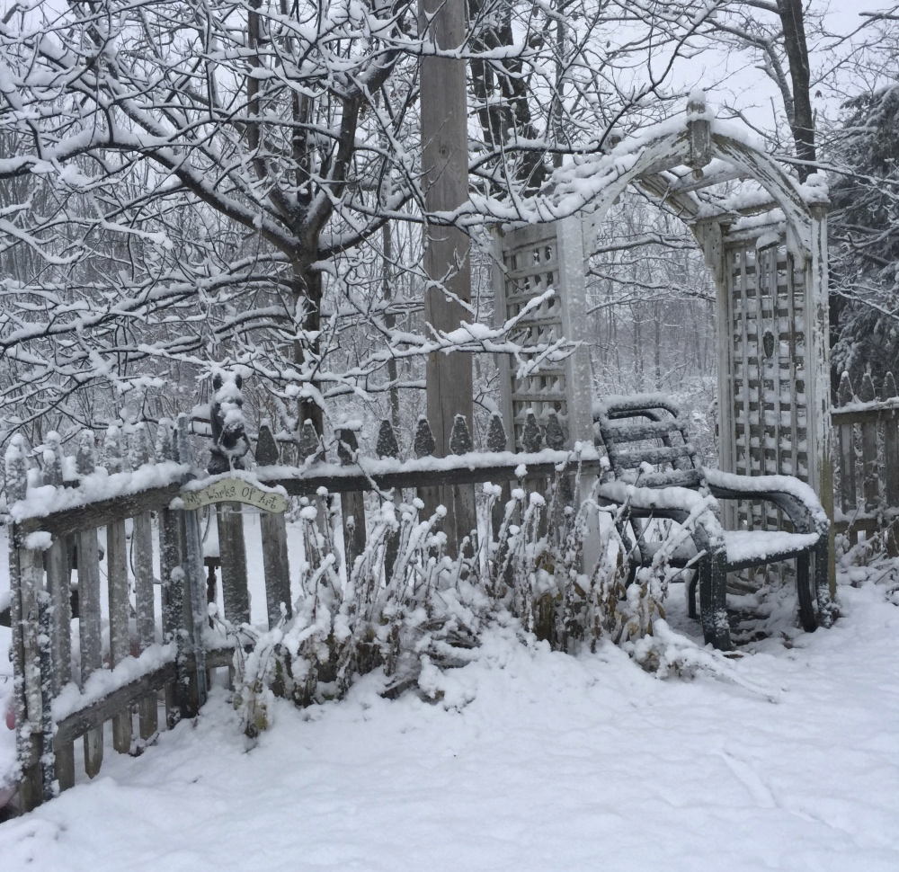 winter-wonderland-img_0965_fotor