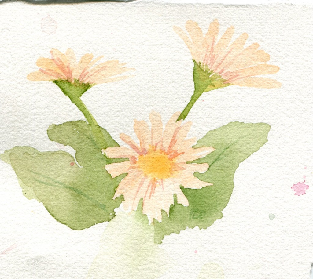 Gerber Daisy before the rework. I'm not sure why I thought it was done at this point!